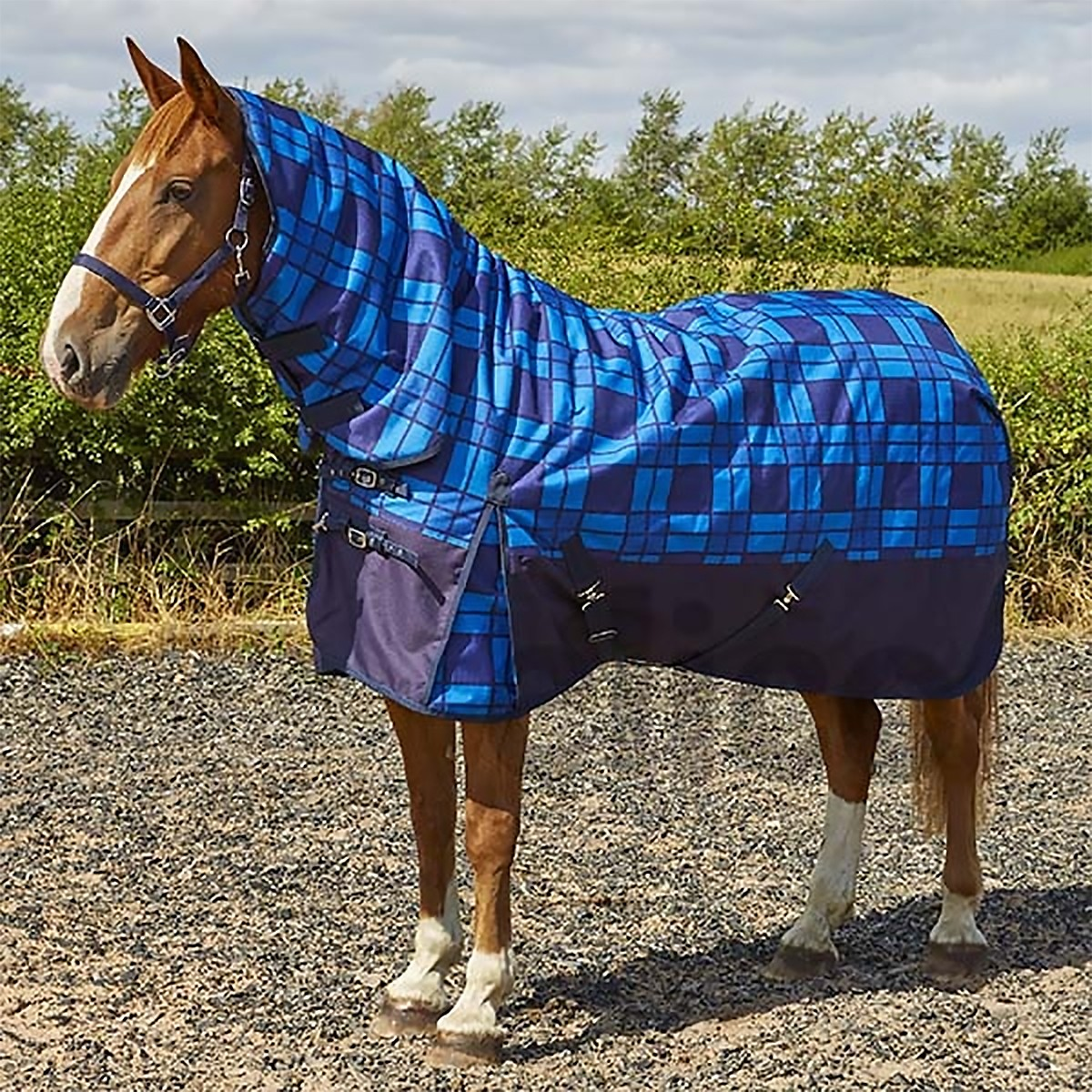 Elicouture Torridon 300g Heavyweight Combo Turnout Rug