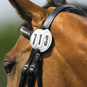 Bridle Numbers (Pair)