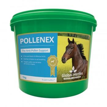 Global Herbs PolleneX 1 Kg