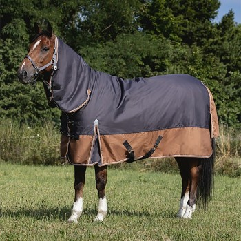 Equitheme Tyrex 600D 100g Combo Aisance Lightweight Grey/Brown Turnout Rug