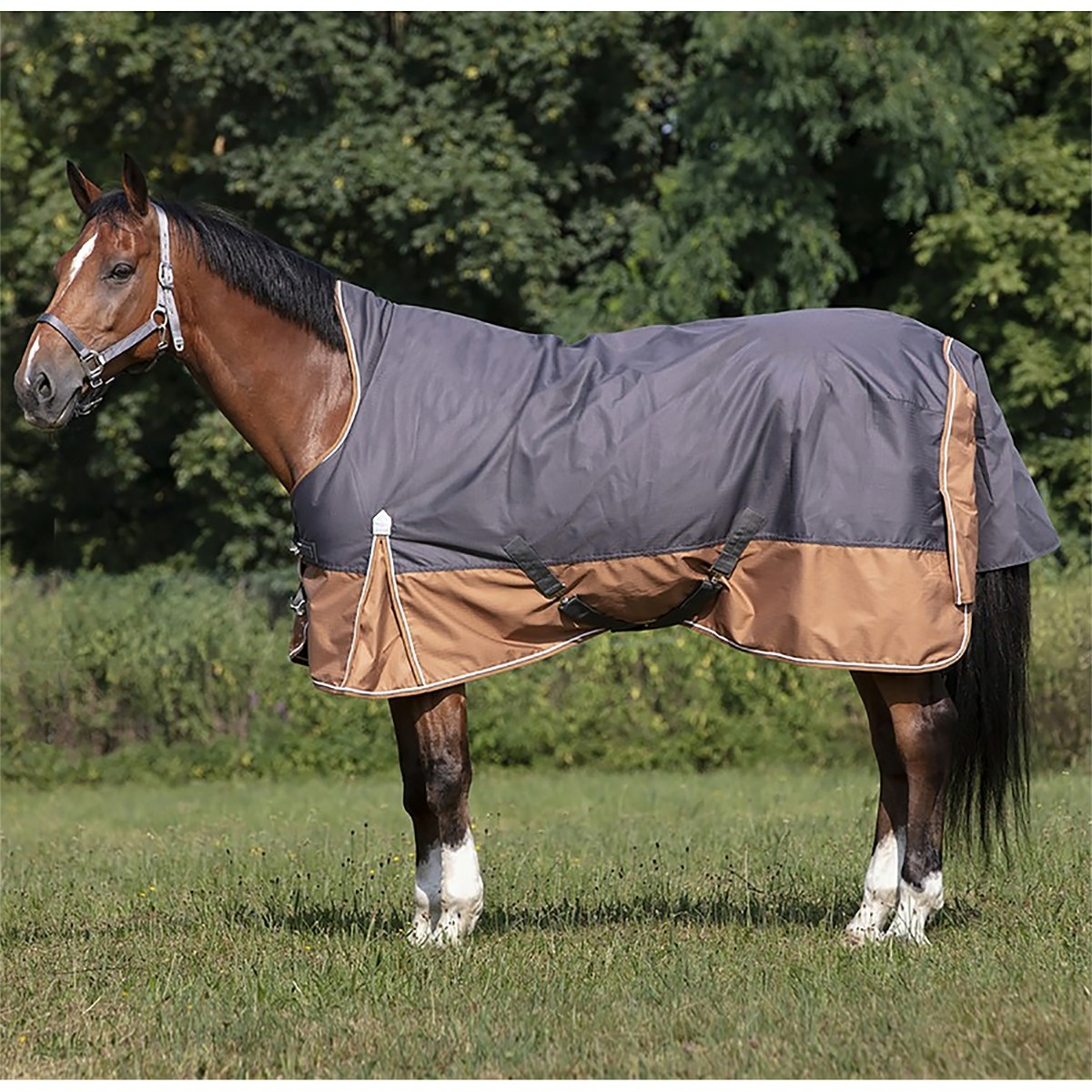 Equitheme Tyrex 600D Aisance High Neck 300g Heavyweight Turnout Rug