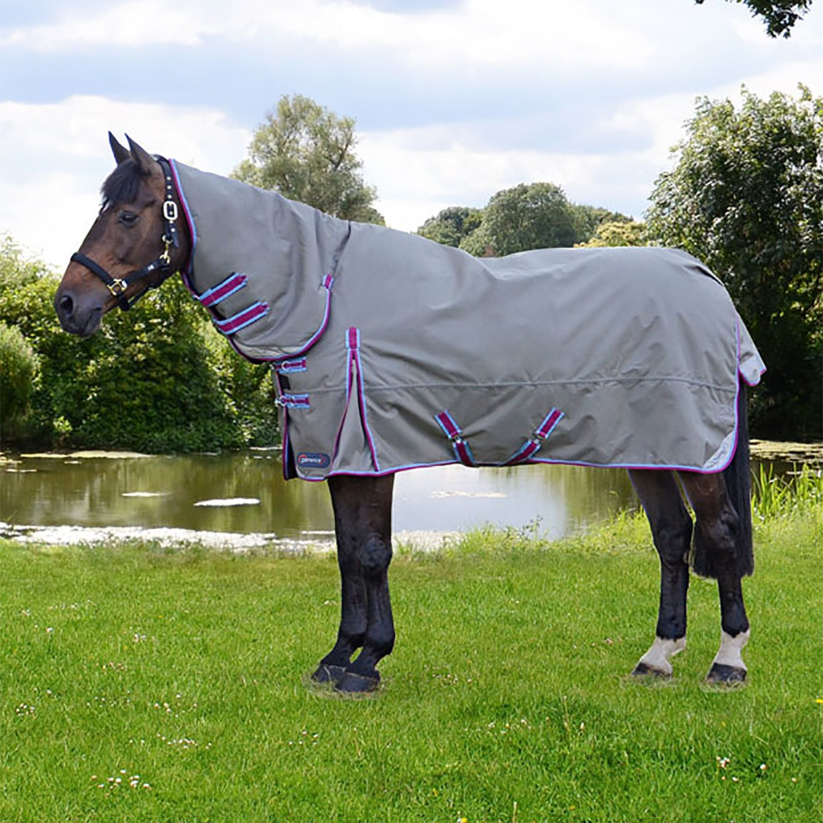 Hy DefenceX System 300g Heavyweight Combo Turnout Rug
