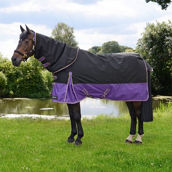 Hy StormX Original 200g Mediumweight Turnout Rug With Detachable Neck Cover