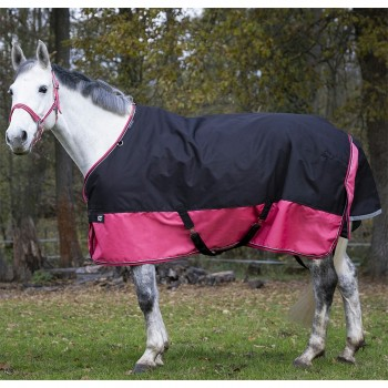 Equitheme Tyrex 1200D Lightweight Black/Raspberry Turnout Rug