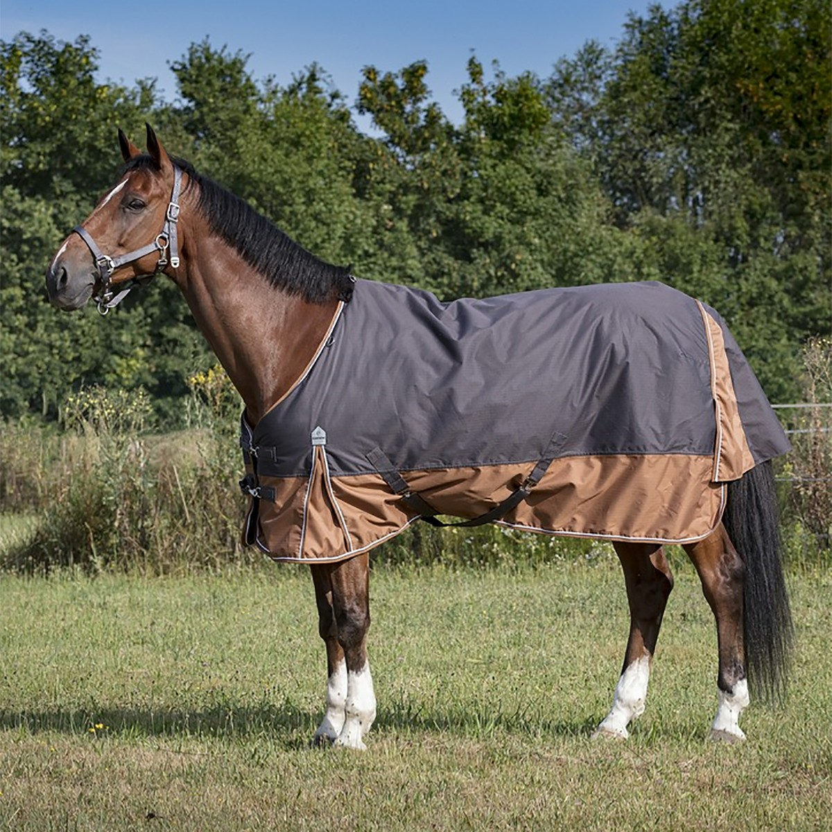 Equitheme Tyrex 600D 300g Aisance Grey/Brown Heavyweight Turnout Rug