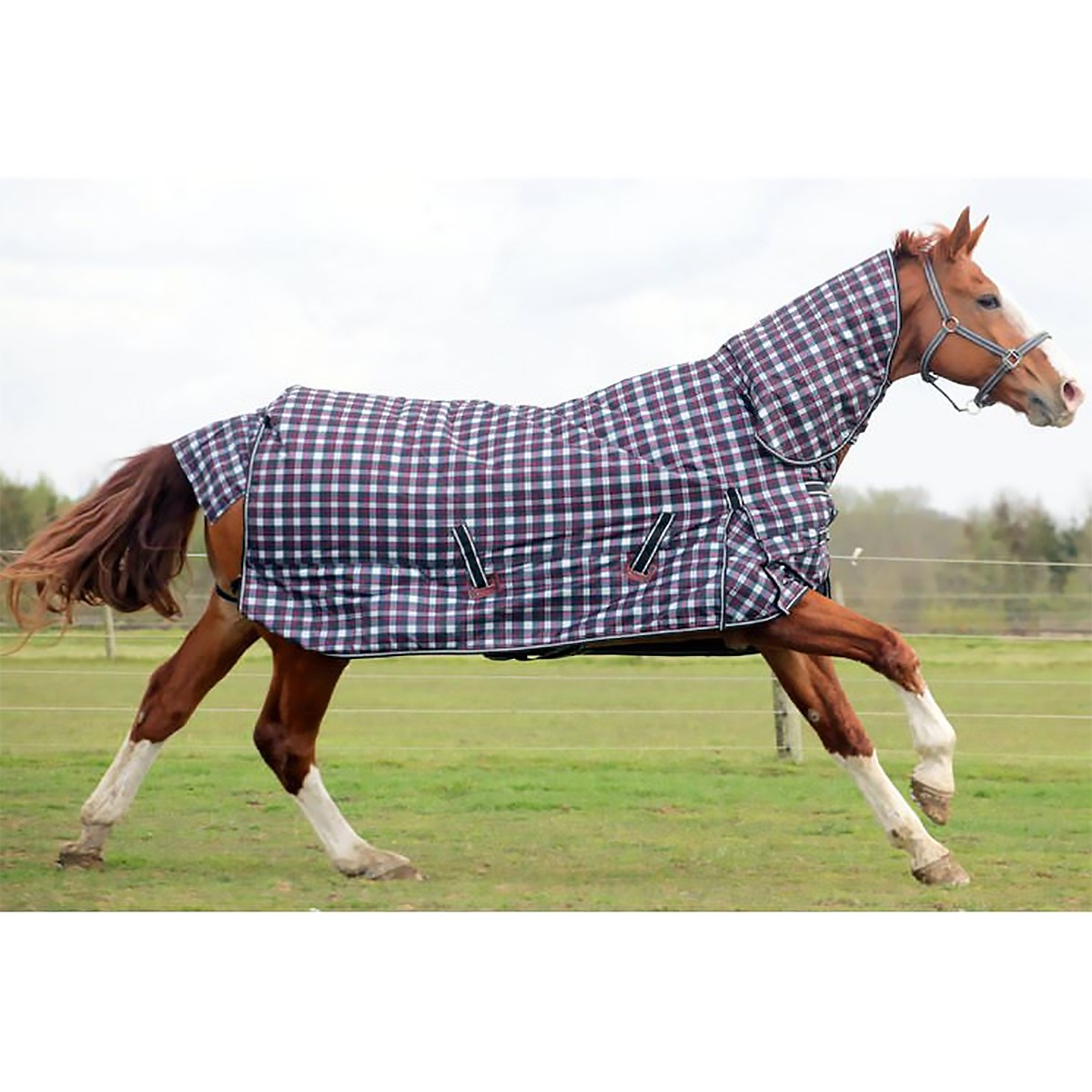 Rhinegold 1000D 320g Glacier Check Heavyweight Combo Turnout Rug