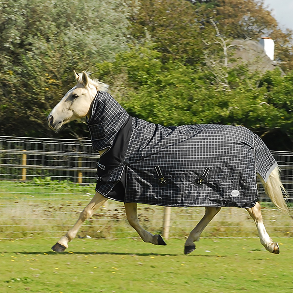 Rhinegold 600D 100g Montpelier Check Combo Turnout Rug