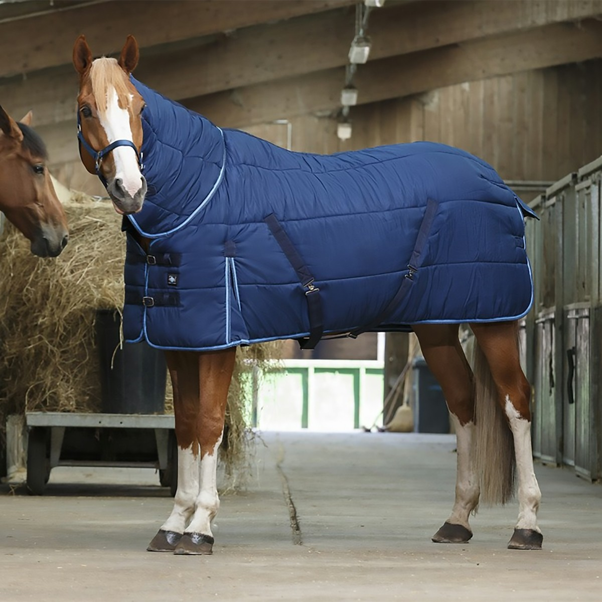 Riding World 300g Heavyweight Blue Combo Stable Rug